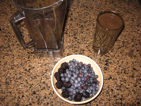 Raw food diet day 15 breakfast