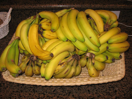 Raw food diet day 6 bananas