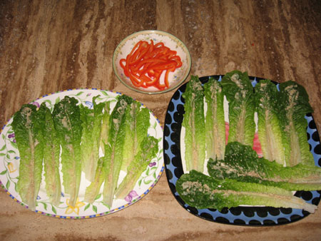 Raw food diet day 8 lunch